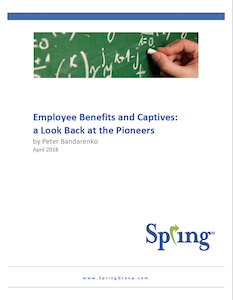 Employee Benefit Captive Survey Report thumbnail